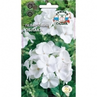 Семена цветов СеДеК, Пеларгония СеДеК Облака