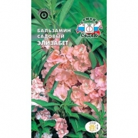 Семена цветов СеДеК, Бальзамин СеДеК Элизабет лососево-розовый