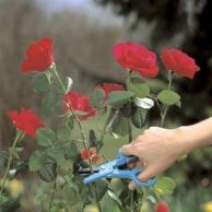 Высоторезы GARDENA, Ножницы для роз GARDENA