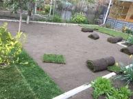 Высадка газонов