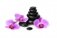Семинары, фестивали, мастер-классы Курсы обучения Стоун массаж