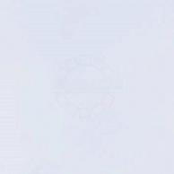 Полиэтиленовая пленка Защитные пленки Самоклеящаяся пленка Gekkofix 10060 витражная матовая белая 0,45х2 м